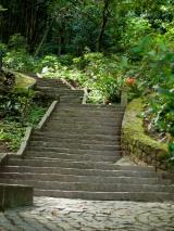 Parque da Catacumba-Cranford1